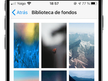 biblioteca de fondos de whatsapp en iphone