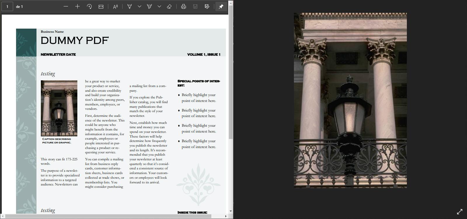 foto jpg de pdf
