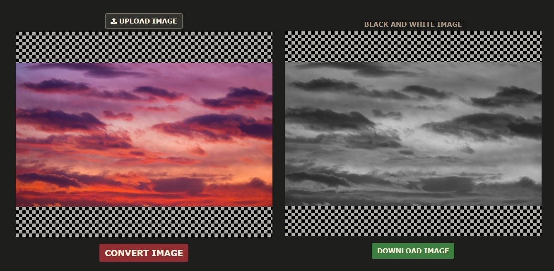 convertir foto en blanco y negro online